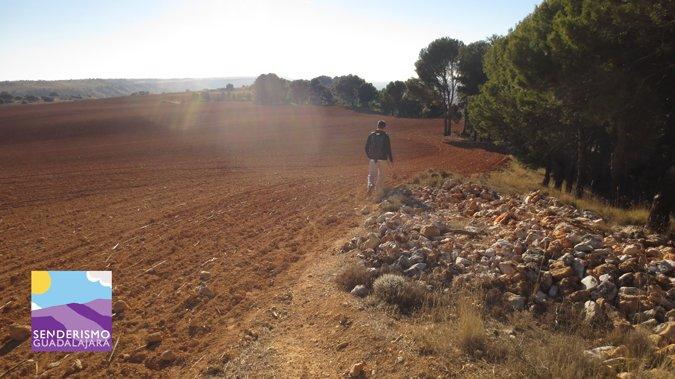 senderismo_guadalajara_subida_pena_hueva_cultivos_en_la_cima