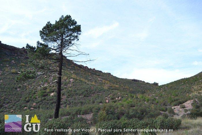 valle_de_los_milagros_guadalajara24