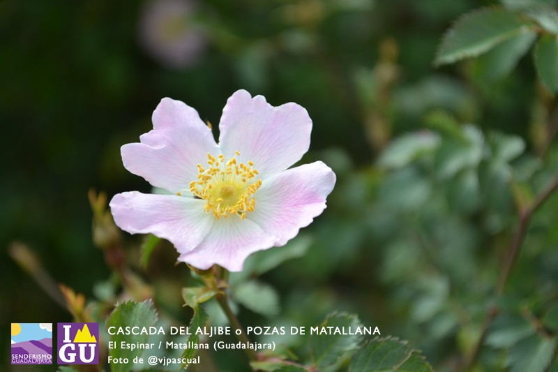 cascada_pozas_aljibe_95