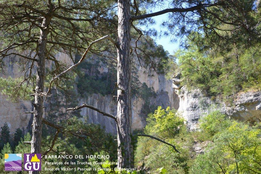 ¡Nueva ruta por el Alto Tajo! Visita el Barranco del Horcajo