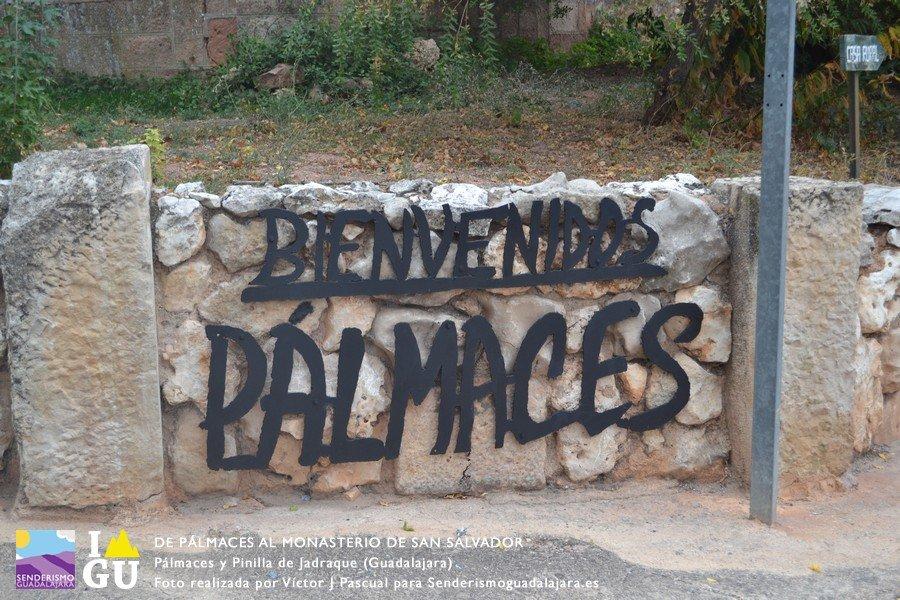 palmaces_monasterio_san_salvado_01