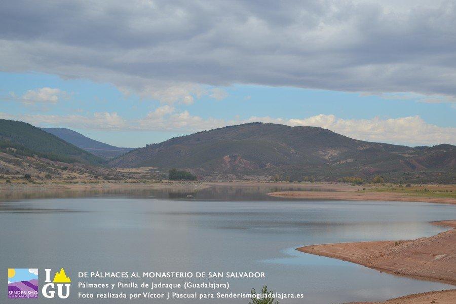 palmaces_monasterio_san_salvado_03