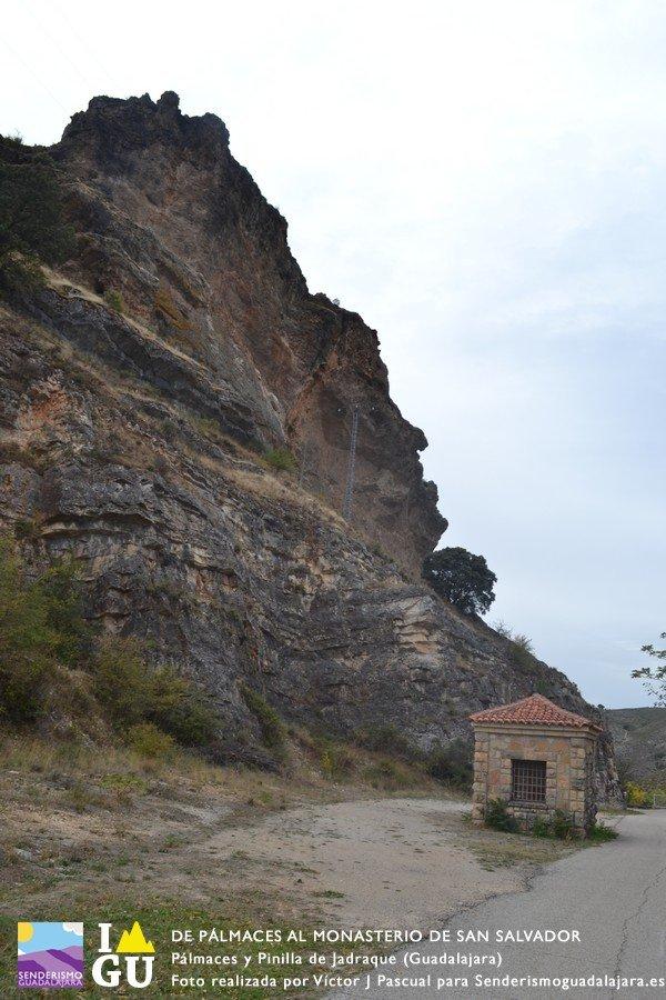 palmaces_monasterio_san_salvado_04