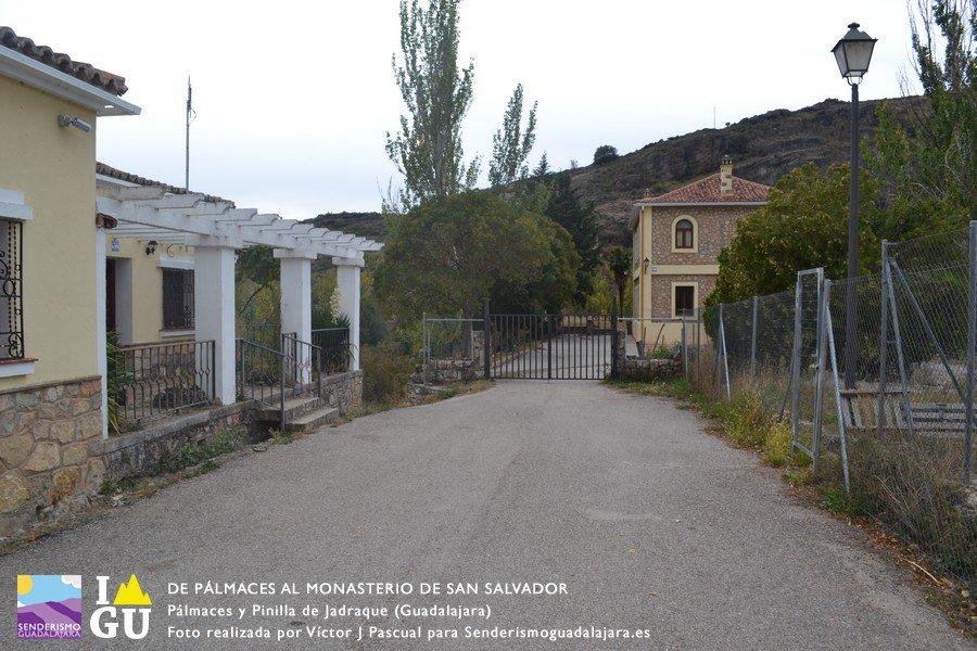 palmaces_monasterio_san_salvado_06