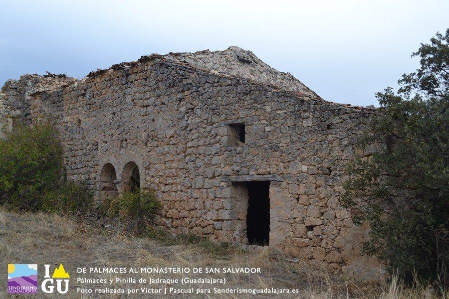 palmaces_monasterio_san_salvado_21