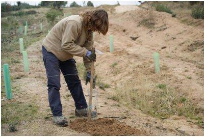 Entrevista a Reforesta, asociación de recuperación de los bosques