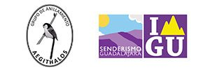 logos_de_senderismo_y_aegithalos