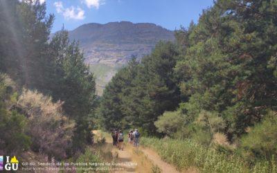 SPG-62: Recorriendo el sendero GR-60, día 1. De Tamajón a Valverde de los Arroyos