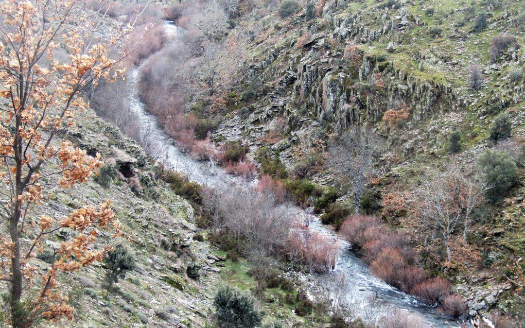 Guadalajara estrena dos nuevos senderos homologados en la provincia: Milmarcos y Pozas del Aljibe